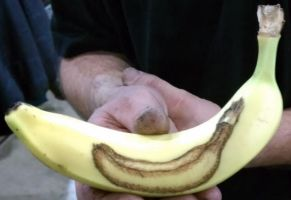 INCEPTION BANANA by meathive
