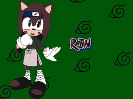 Rin The Hedgehog by Tails19950