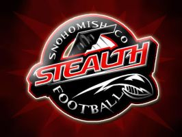 Snohomish County Stealth 02 by DennisDawg