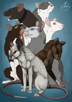 Madra bunch WIP by Chaluny