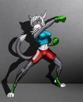 Shadow boxing by egardn4