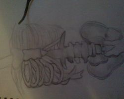 Rib Cage Sketch by iluvvanessa