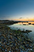 Blue mussel beach by Sekundkvadrat