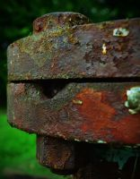 Rusted Pipe Cap n Bolts by PAlisauskas