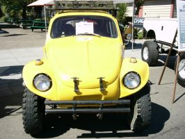 Kiss the Yellow Beetle Face by RoadTripDog