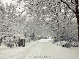 a lot of snow by spiti84