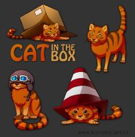 Cat in the Box by jrtracey