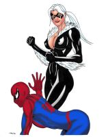 Black Cat VS Spidey 2 Colors by ESO2001