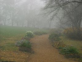 The foggy path 1 by GriffinPhillis
