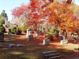 Sleepy Hollow Cemetery by phoenix-snapt