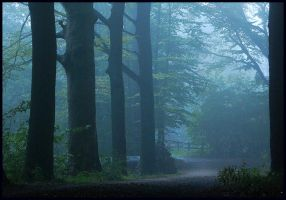 Early morning cycle trip by jchanders