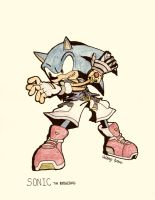 No.1 Sonic the Hedgehog by NextGrandcross