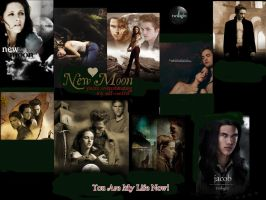 twilight new moon wallpaper by HaSiYnE
