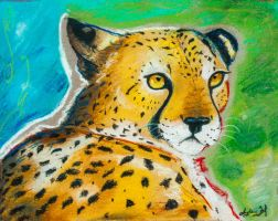 Cheetah by SunStateGalleries