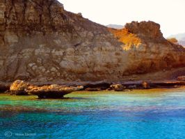 Corals of Egypt by Moonbird9
