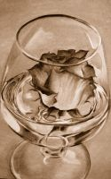 rose in wine glass -browns by megan-alyce