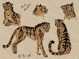 TieS-cheetah form sketch by TS-cat