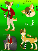 Lukas the shiba Inu ref sheet .:2013:. by Letipup