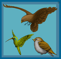 Birds for Totemlands by HaanPere