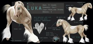 Luka Character Sheet by Ospreyghost13