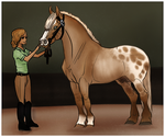 Dilute Second Annual Show - Dun/Pearl Halter by strideroo