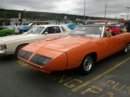 Superbird angle by lowlow64
