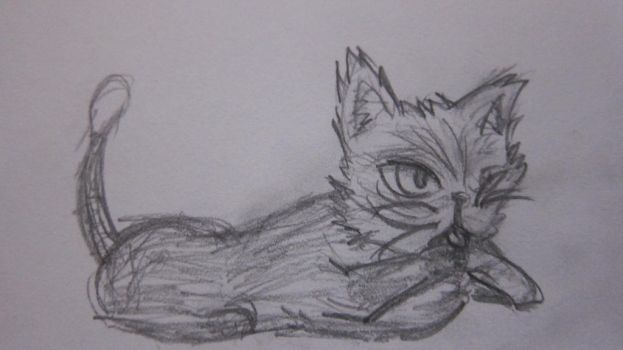 My first serious Cat (10 year) by ArtWelloW