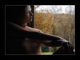 Introspection by C-Photography