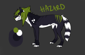 Hazard reference by Rinermai