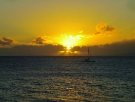 Catamaran Sunset Maui by Marilyn958