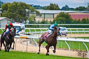 The Races 8 by Savage-PhotographyAU