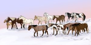 the new Snow Mustangs by abosz007