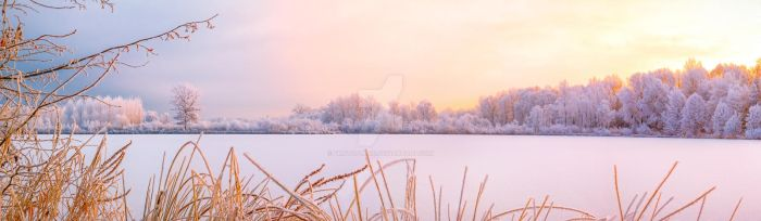 rime by photoplace