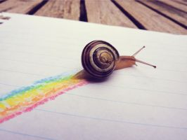 Rainbow snail. by Leinzel