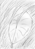 Leaf In The Rain Sketch by theunknown1