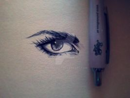sometimes a biro is enouth by Nadine2807