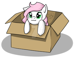 Request: Luck Box in a Box by DragonGirl983