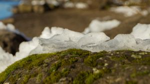 Snow, Rock and Moss by DevinShadowV