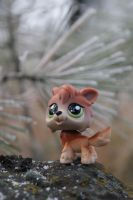 LPS  Wolf by Eli102