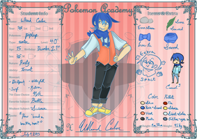 PokeAcademy Application by Arashi-Penguin