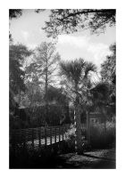 2015-045 Charles Towne Landing - Palmetto welcome by pearwood