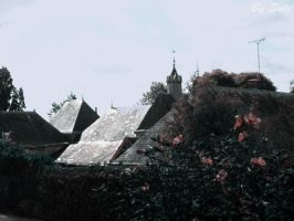 Roof by Salindra