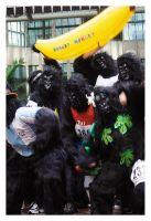 Gorillas - 7 by StrawBeth