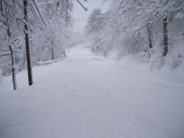White out road 2010 by caboose11l2