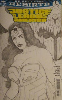 Wonder Woman Custom Cover by ExMile
