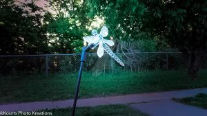Crystal Dragon Fly by KourtsPhotoKreations
