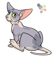 Hairless Cat Design by Tattletail
