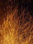Fire's Fireworks by narlified