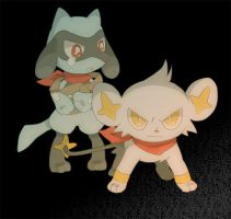 Shinx defending riolu by humphreywolf2012