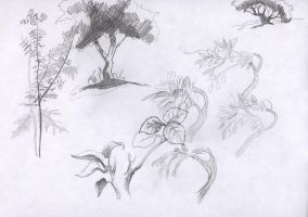 practice: trees and bushes by Luphia